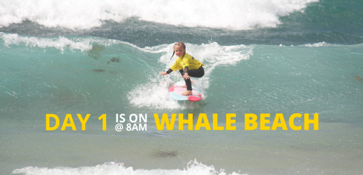 DAY 1 IS ON AT WHALE BEACH